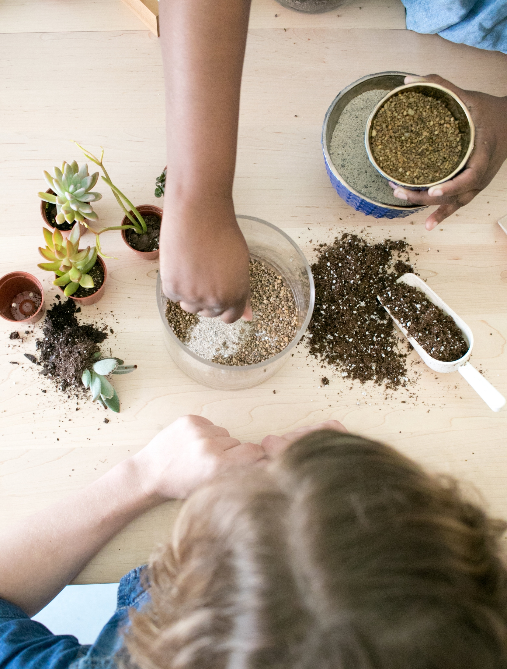 The ZEN Succulent Raleigh will feature an expanded    DIY Terrarium Bar , with more seating and room to get messy.