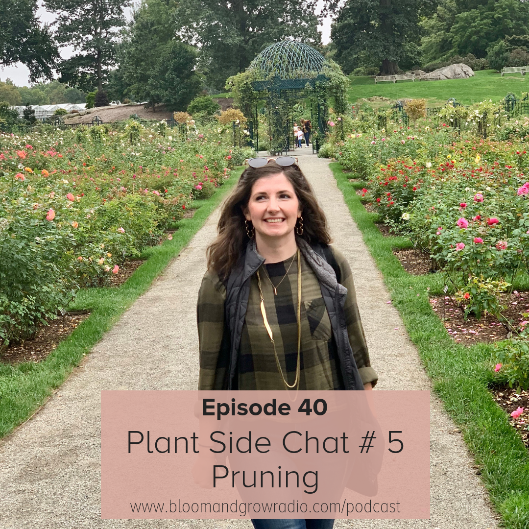 One of our favorite episodes from Bloom and Grow Radio is when Maria tackles the panic-inducing topic of pruning. Photo credit: https://bloomandgrowradio.com/pruning/