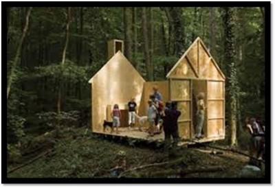 Woods5-e1427479781994.jpg