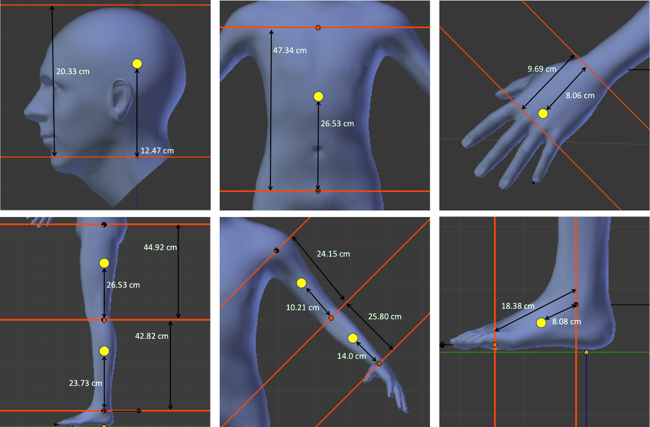 The relative location of the center of mass for each body segment (yellow dot).