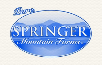 springer mountain.jpg