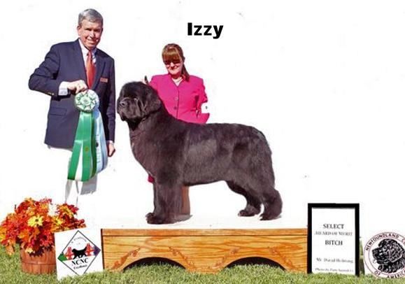 2011-Izzy-Select.jpg