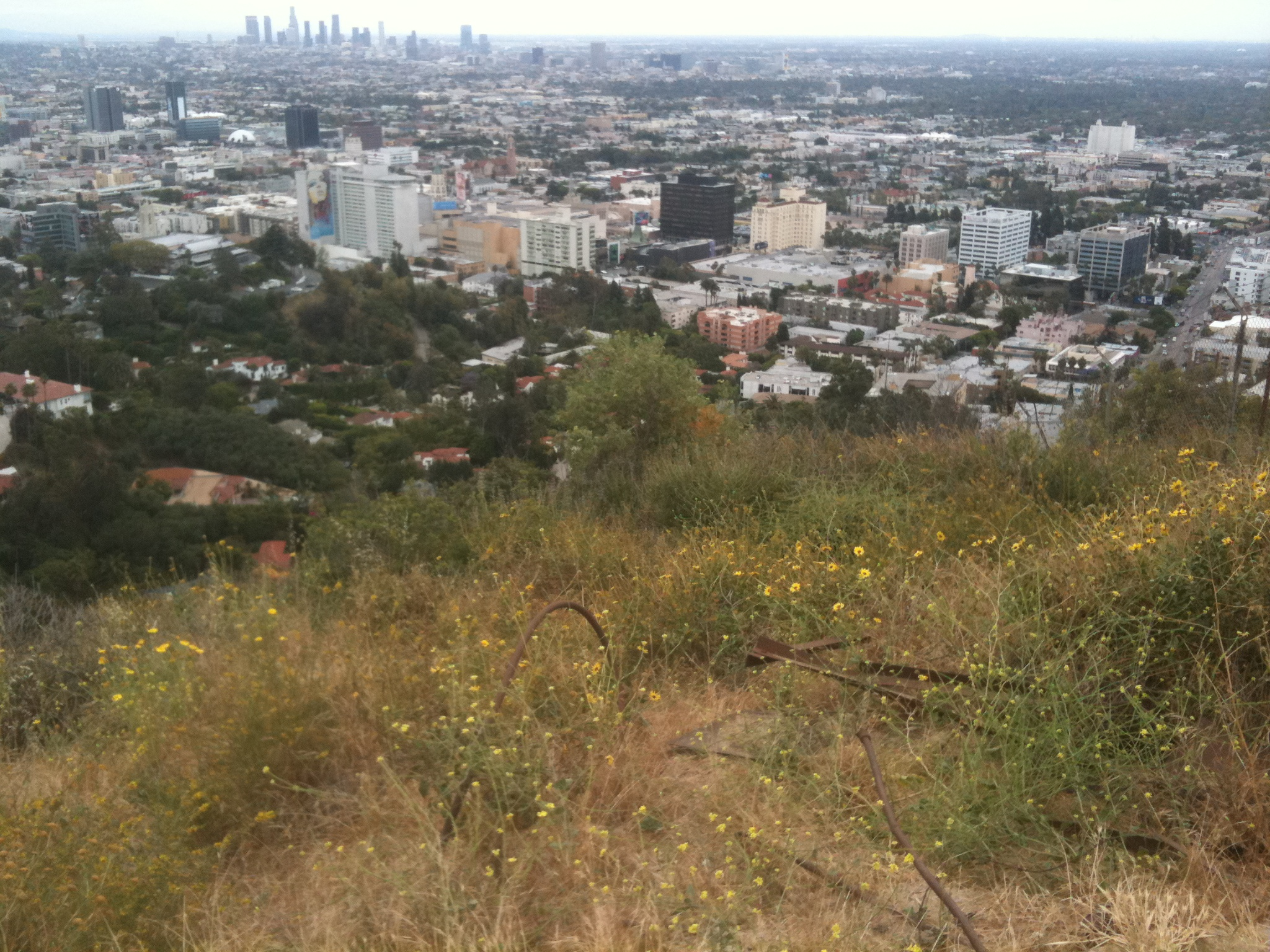 Los Angeles from Runyon Canyon Park 2011