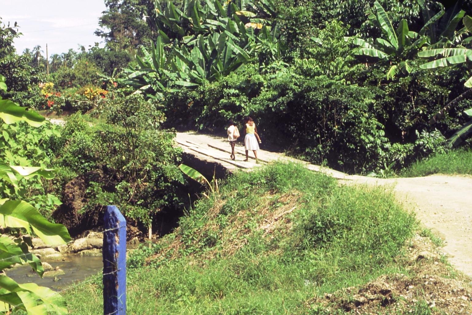 1991 caminando en puente Rio Negro.jpg