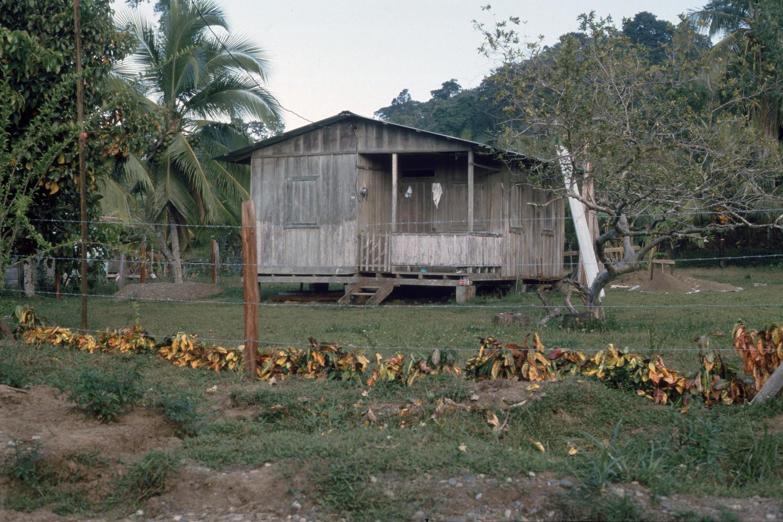 Puerto Viejo    1988    Casa comprada de Gene, hoy casa de Michael Gajek al lado del CENCENAI    CZ_001_016