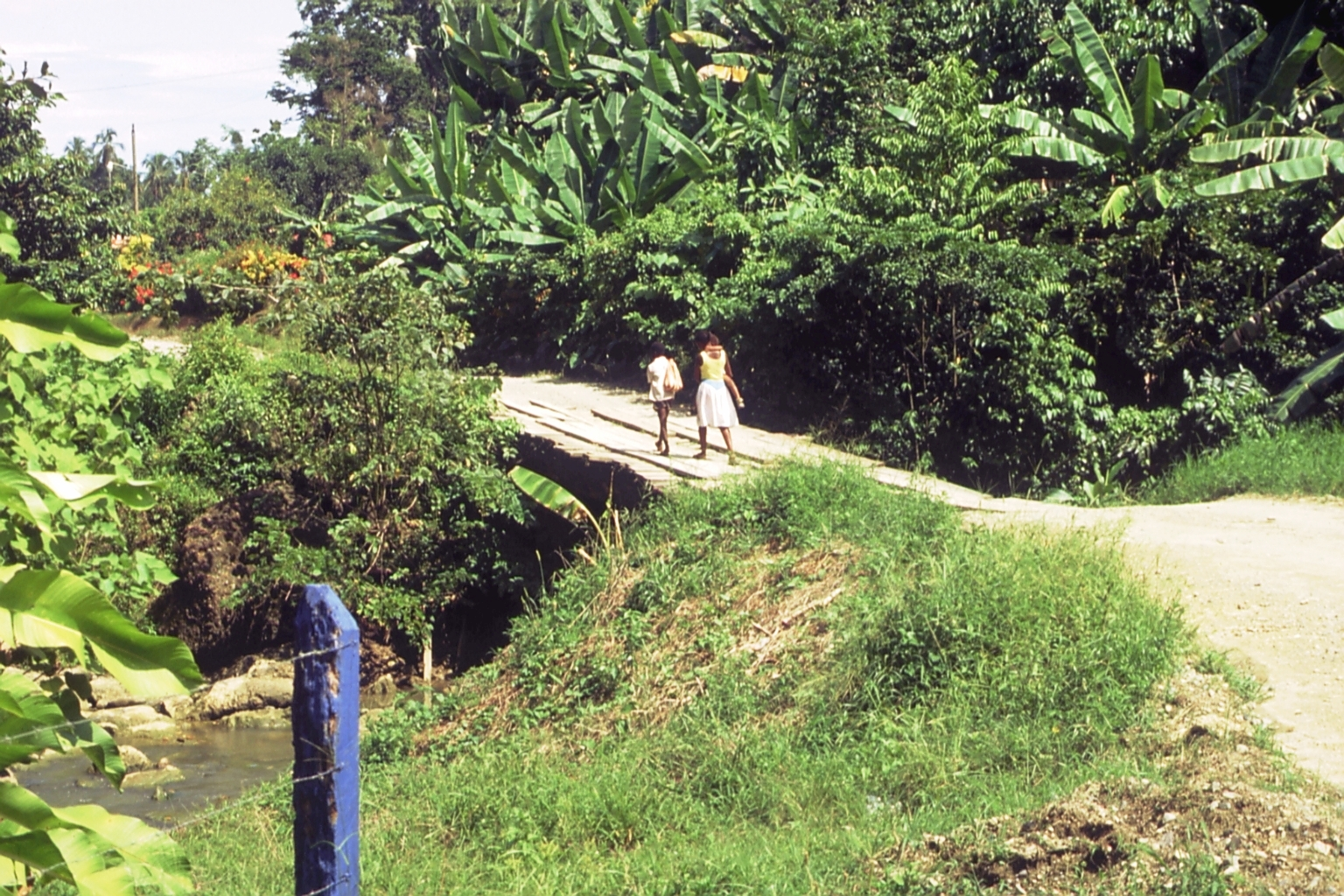 Caminando en Puente Rio Negro    Puerto Viejo    1991    CZ_001_036