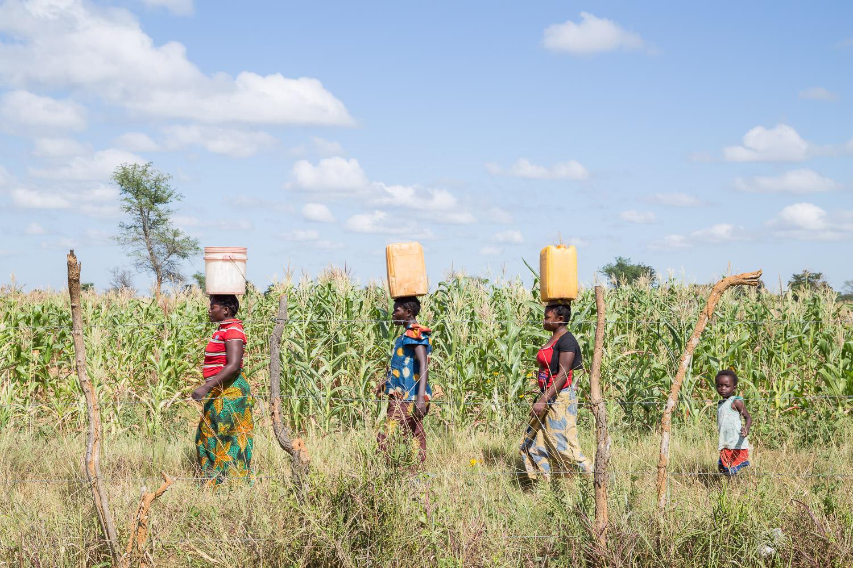 Buckets of Women