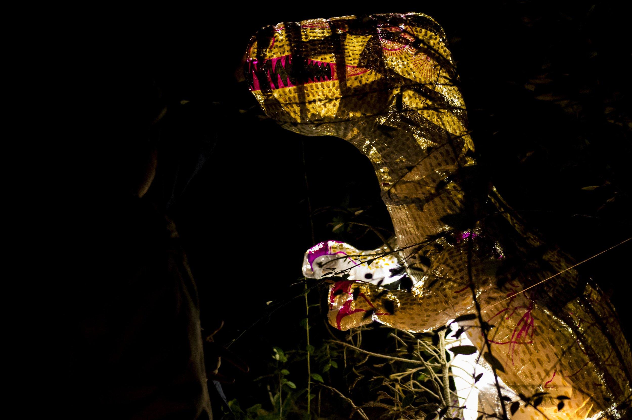 BPS Lantern Night7753.jpg