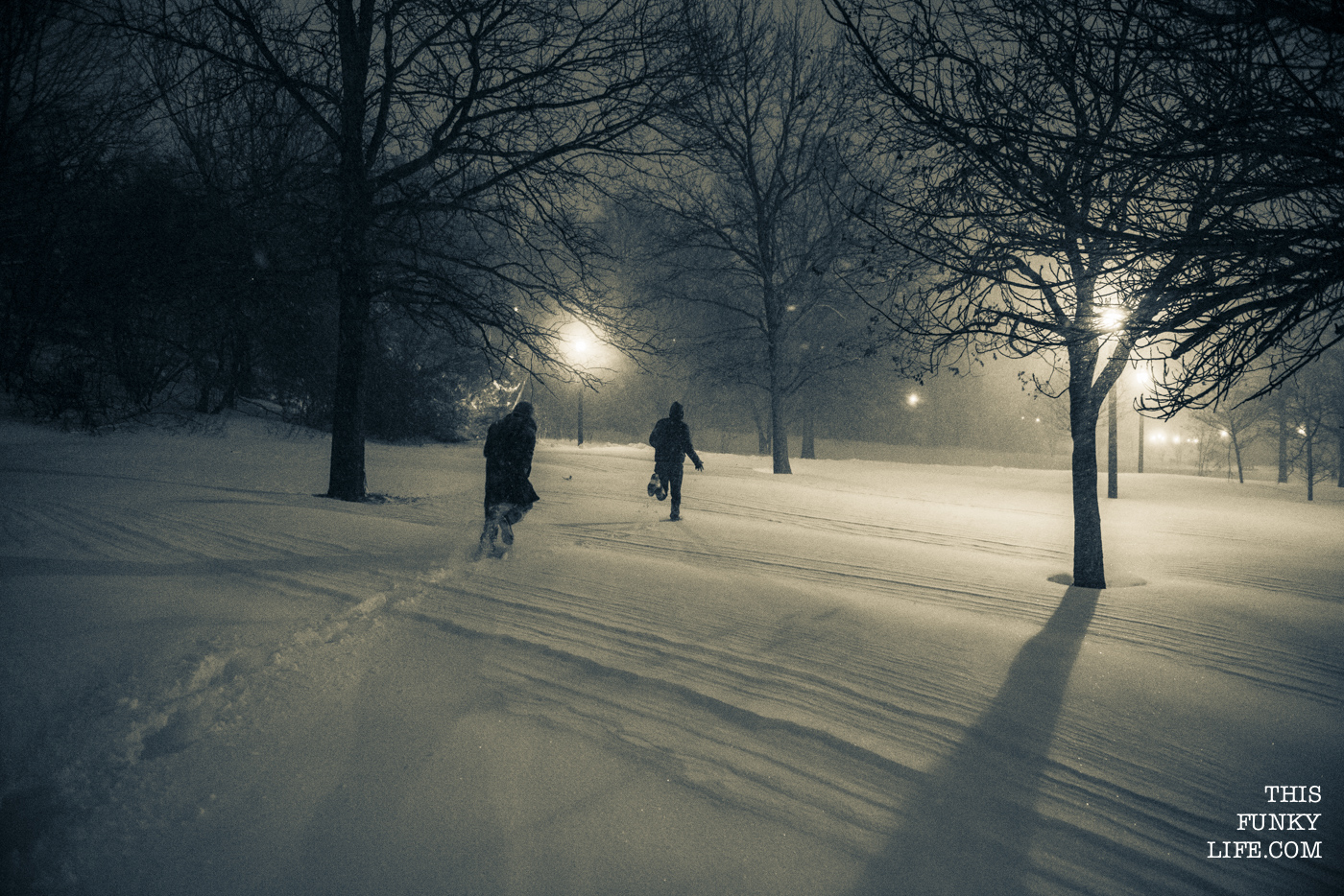 Adults getting to be kids again in the late night fresh snow