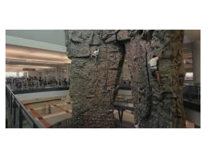 50ft Rock-Climbing Wall