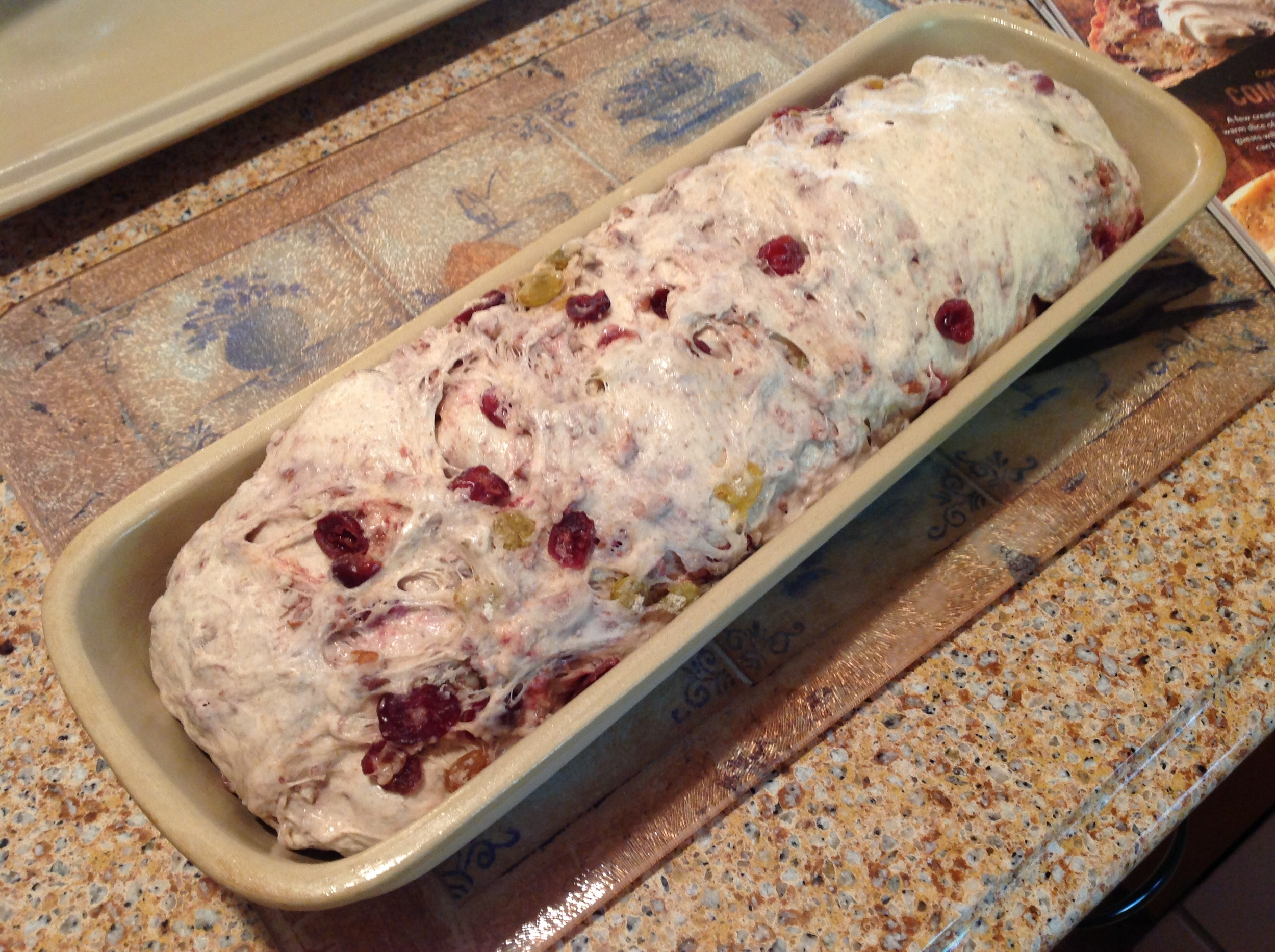 Second rise complete ... ready for the oven!