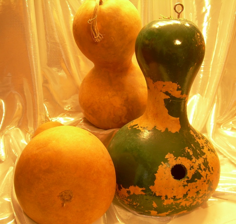 natural gourds and peeling painted gourd