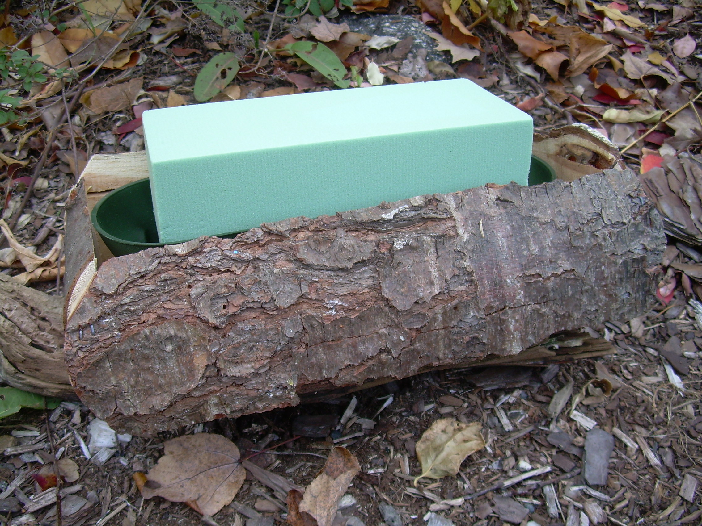 log with oasis block in plastic tray