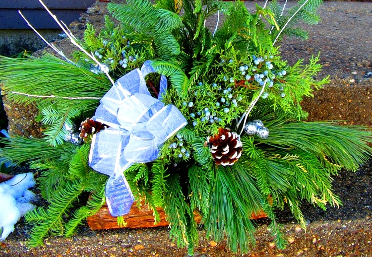mixed evergreen log basket arrangement outdoors on step