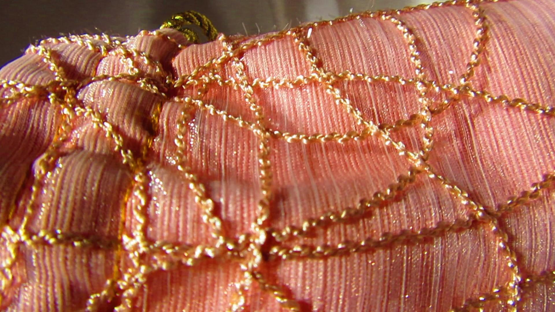 gold glistening braiding on sheer