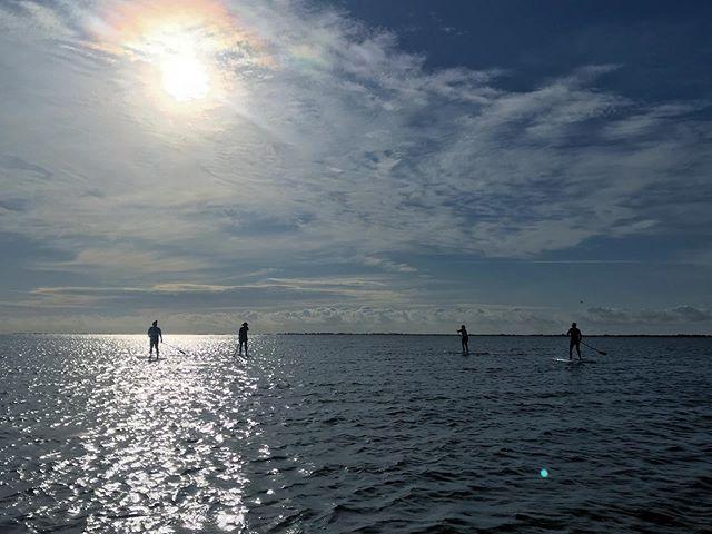 Monday sunshine! ☀️#paddleboard #sup #amcrew #endlesssummer #gsb #gusu19