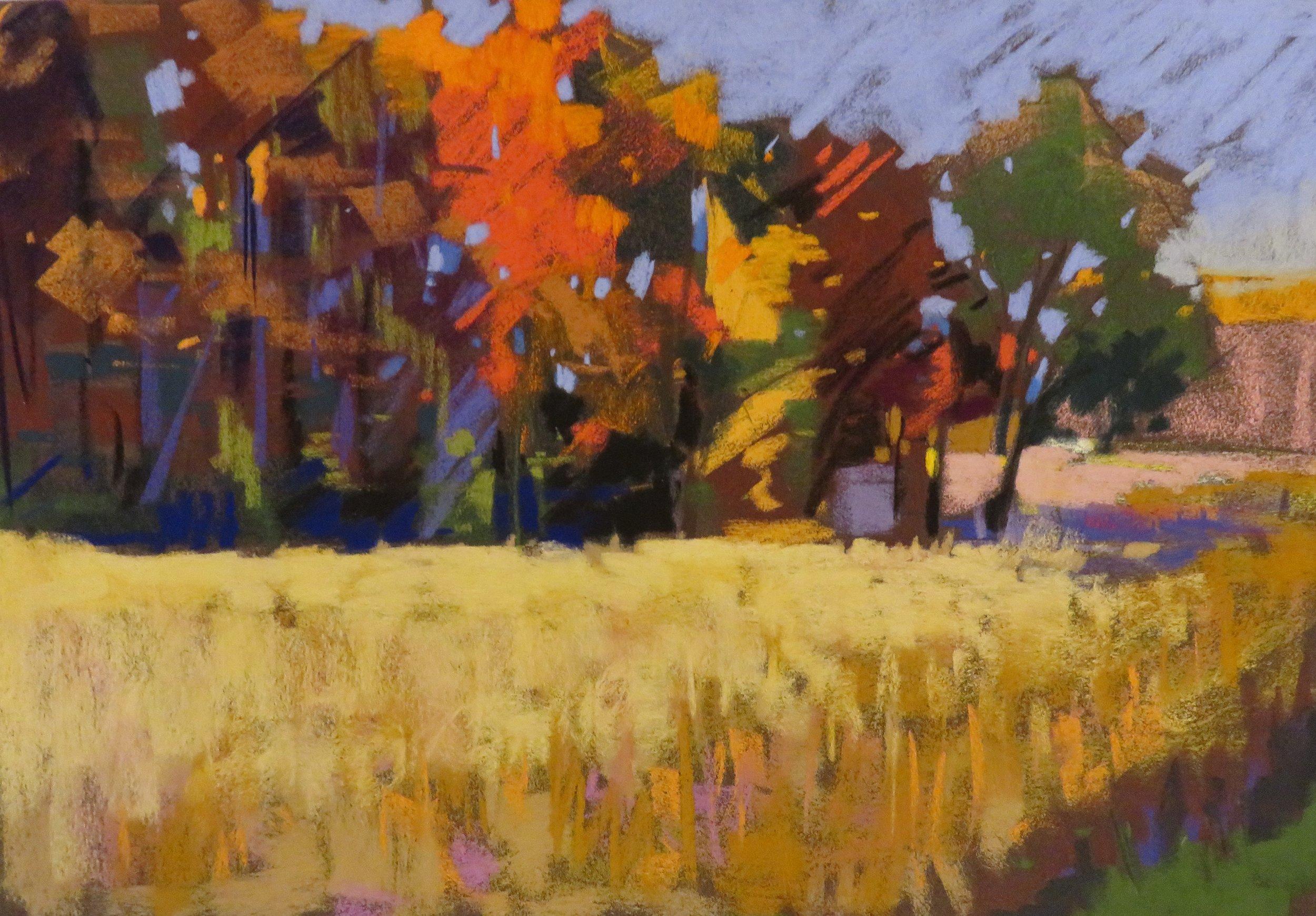 Maple Grove Summer Fields 16x10