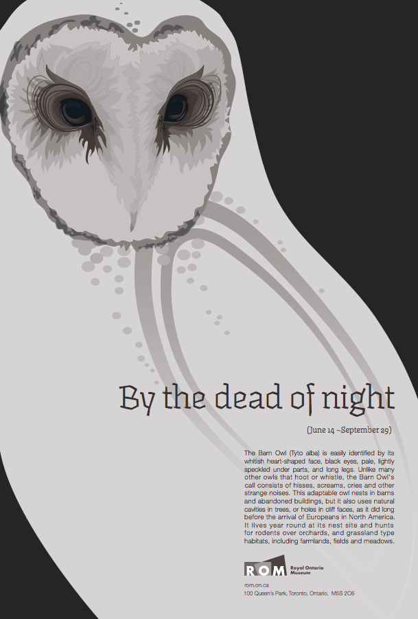 By the dead of night