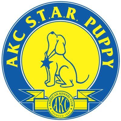 star puppy class