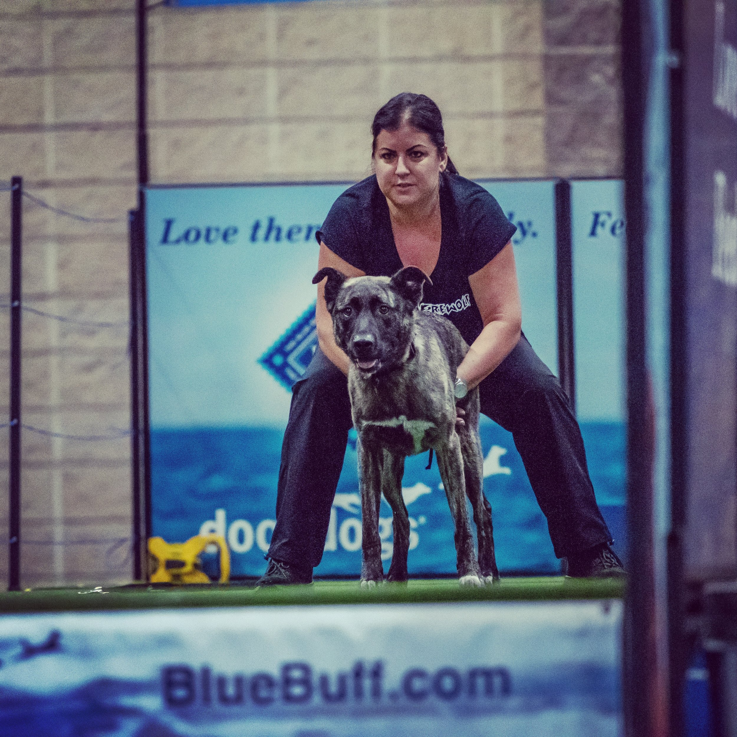 Maria with her dutch shepherd mix torque at the dockdogs world championship