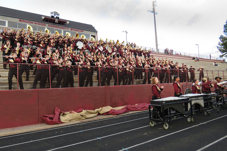 2015 Brookwood HS Band_02_wholeband.jpg