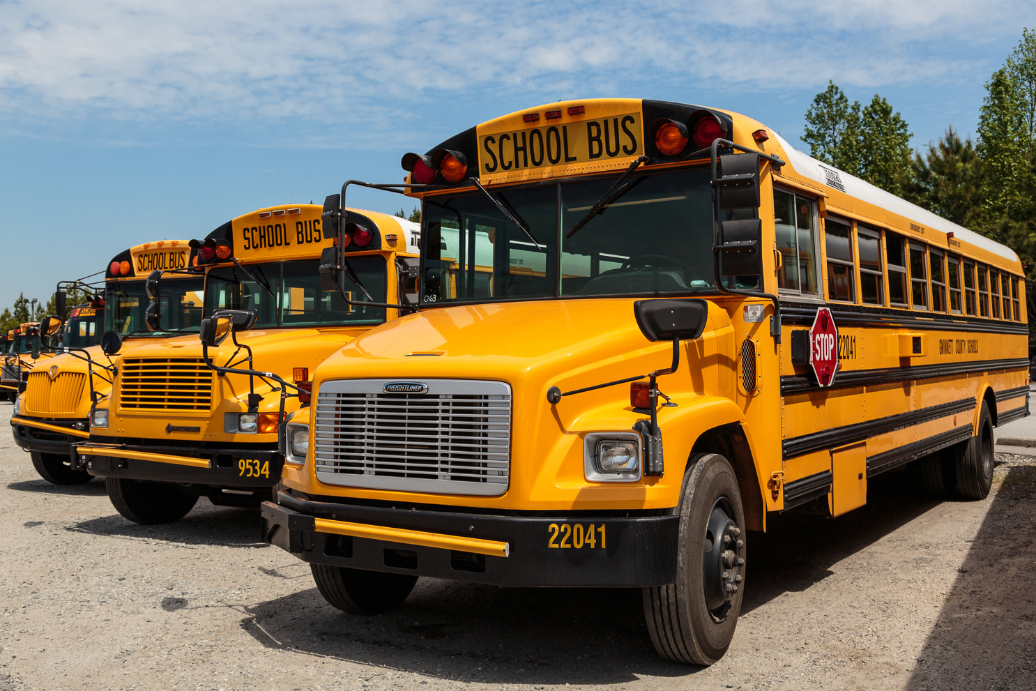 Row of schoolbuses