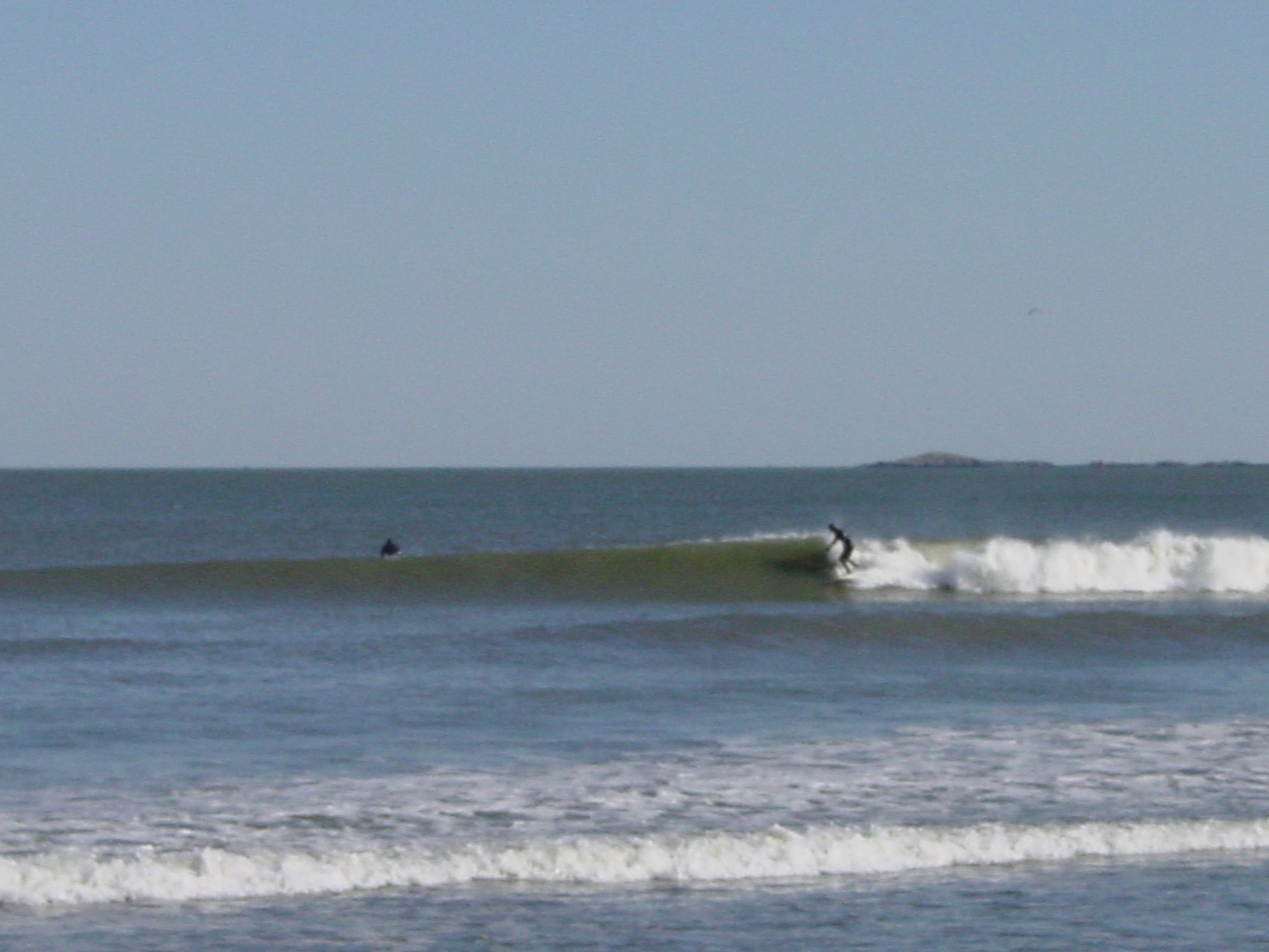 Surfing the Dump 11-07 002.jpg
