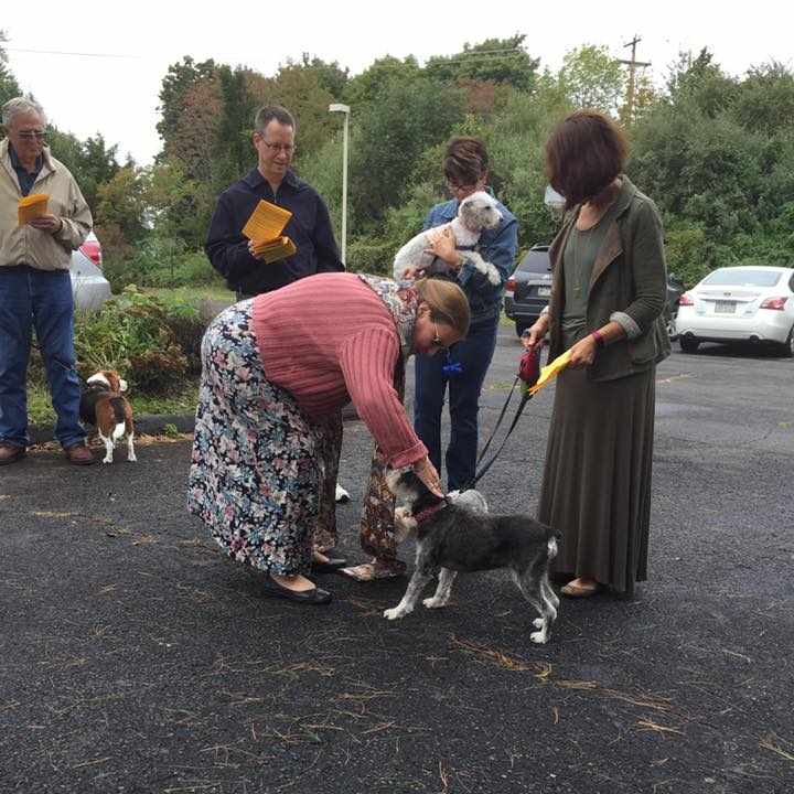 Blessing of the Animals2 2016.jpg
