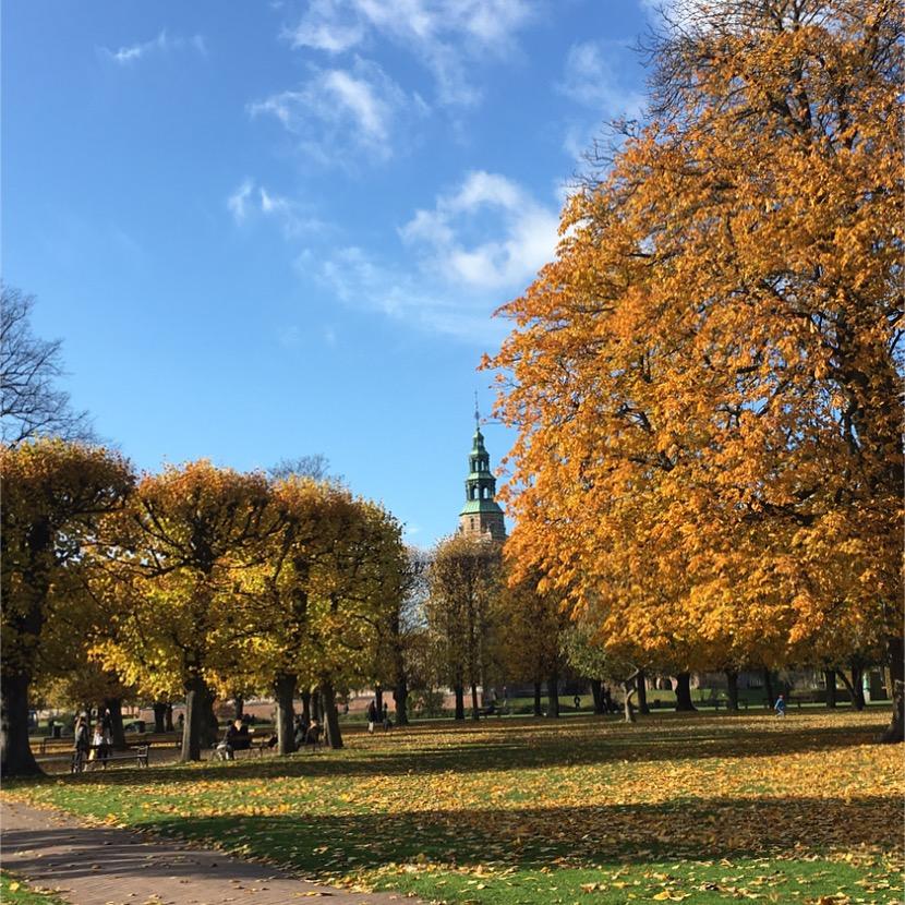 Beautiful autumn colours in the Kings Garden 📷 Rikke Hjuler