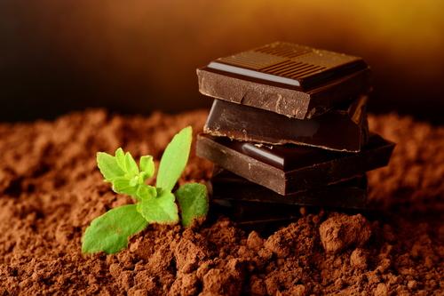 organic raw cacao powder.jpg