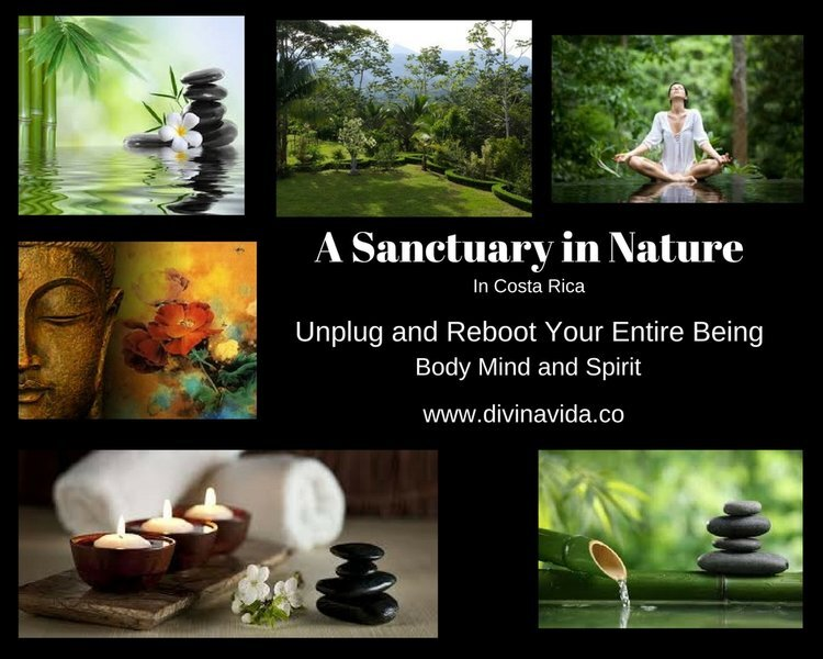 sanctuary in nature home page.jpg