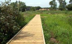 Al Bell Trail completed wooden path