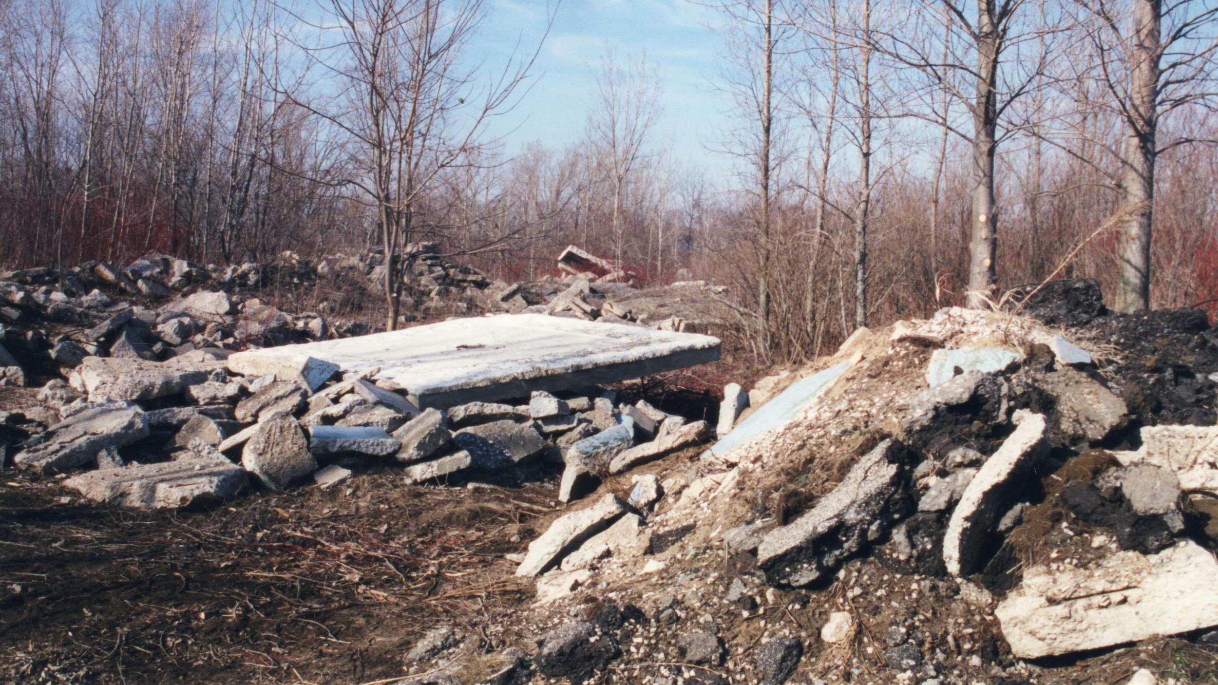 broken stones in forest