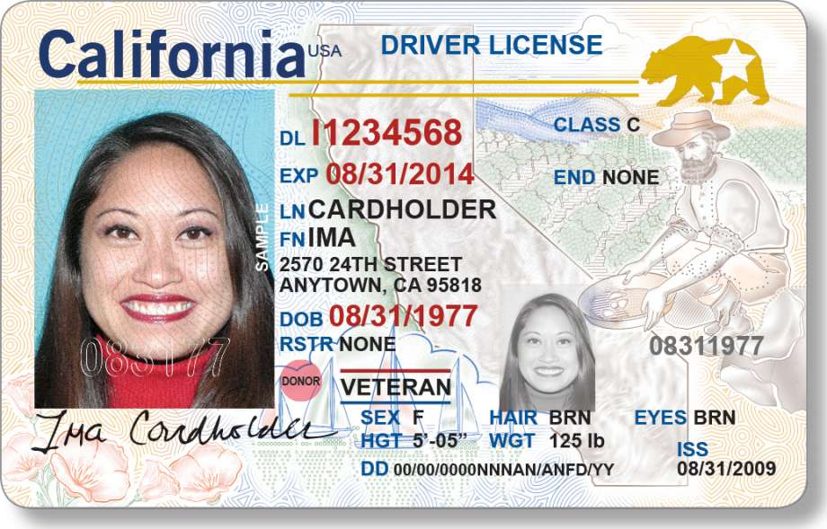 SAMPLE PICTURE OF OFFICIAL PHOTO ID (drivers license, passport or similar)