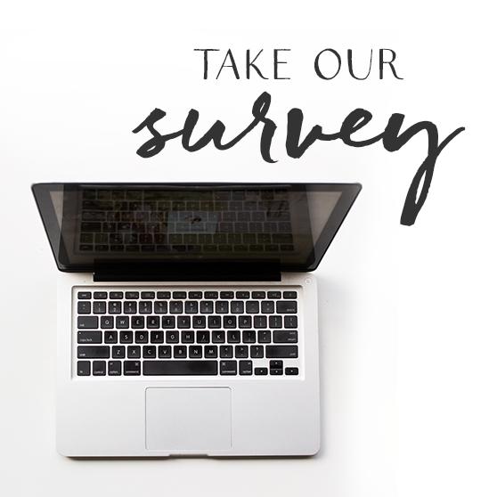 BloguettesFoodStylingEmailSquare-survey.png