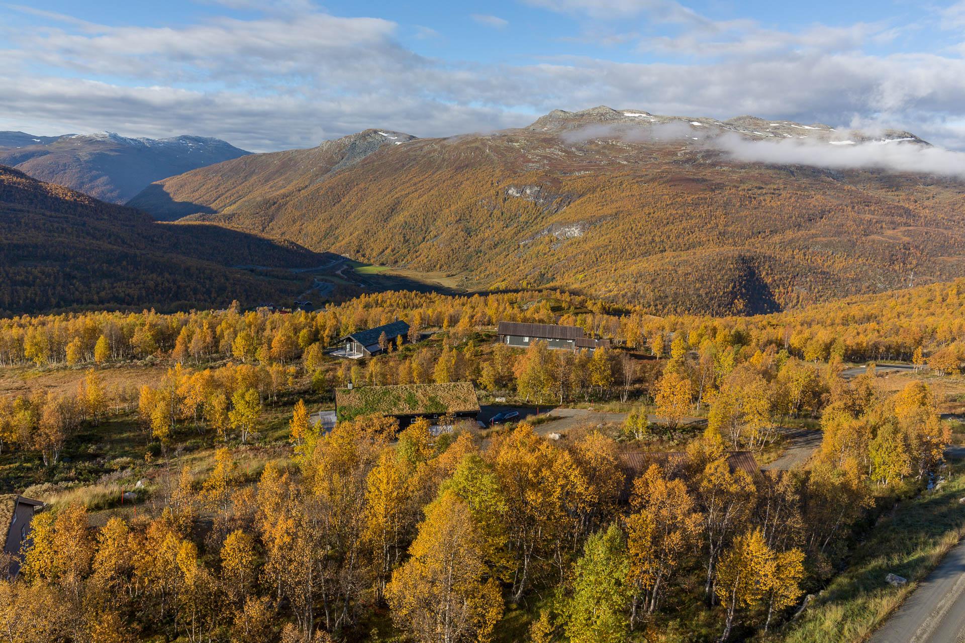 Falkeblikk AS - Filefjell hyttefelt - WEB_3907.jpg