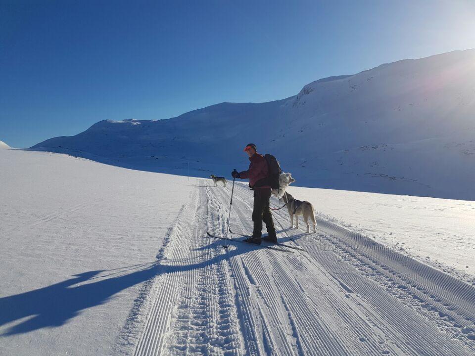 Snøsikkert! - Ski- og føreforhold er helt topp! Kombiner visning med en fin skitur i området.
