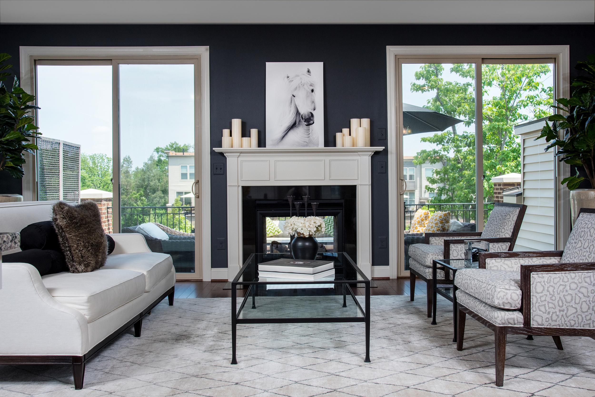 Living Room Photograph Condominium