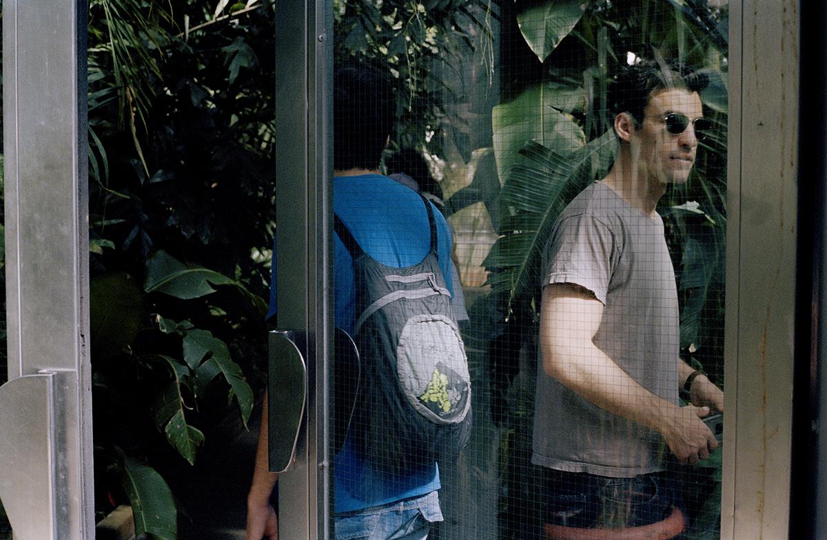 2Plant Cage Madrid.jpg