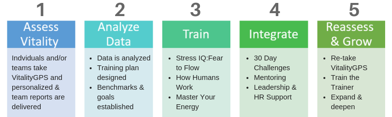 The How Humans Work Training Journey