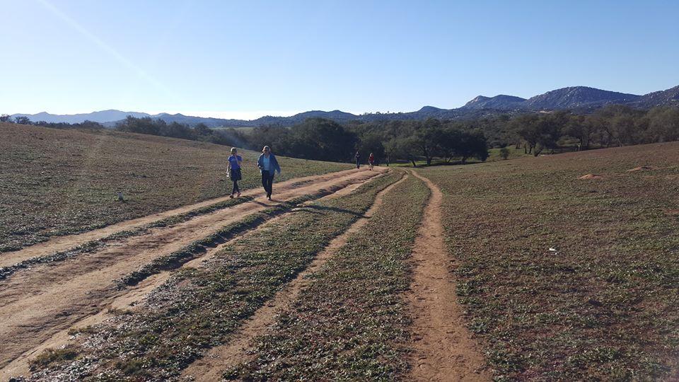 ramonagrasslands.jpg