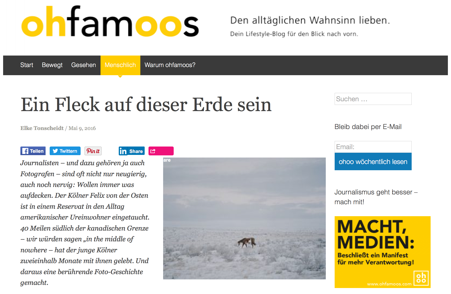 The Interview about my project »The Buffalo that could not drem« on ohfamoos.com. A positive lifestyle Blog from Germany.