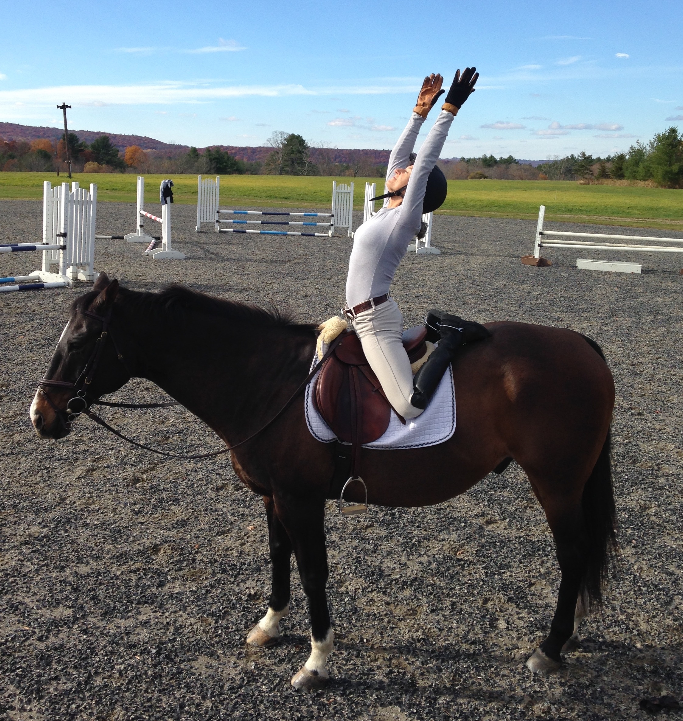 Flit owned by SUsie Pellitier - Flit being a gentleman, letting me practice some new postures