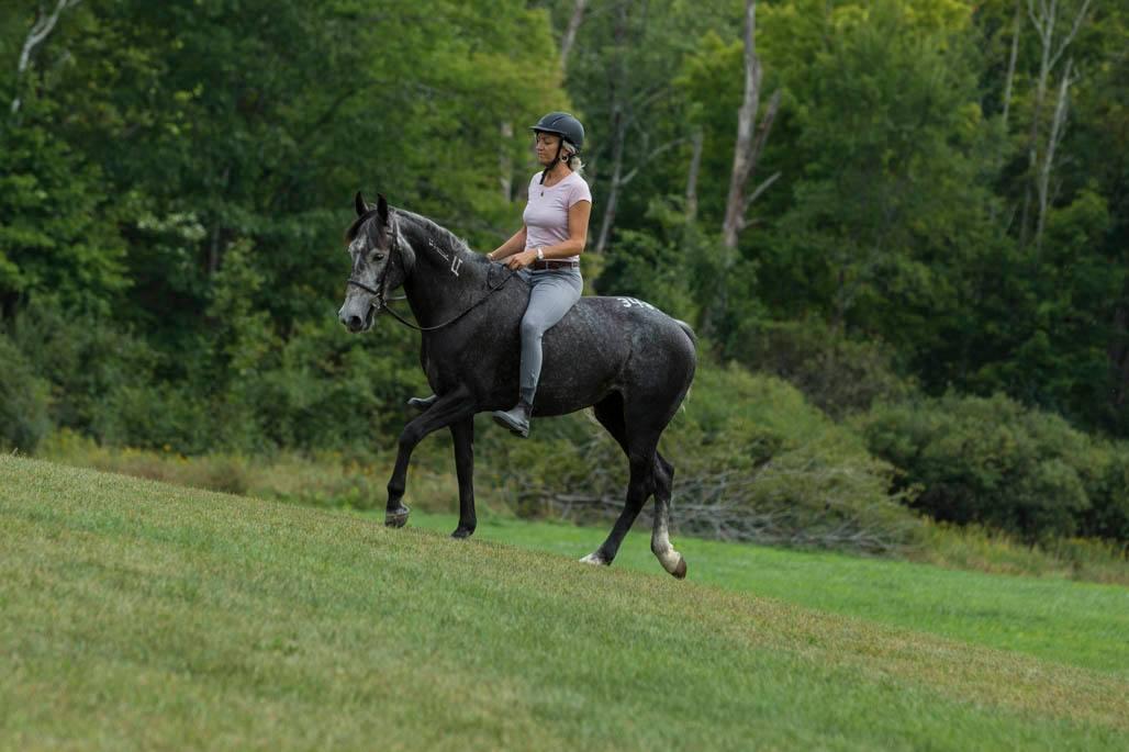 Belle- Equus Yoga's Newest Teacher