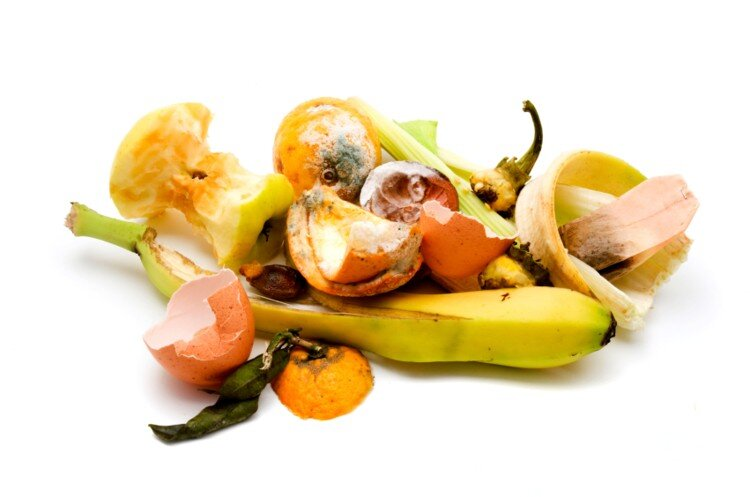Food-waste-one-of-the-great-paradoxes-of-our-times_wrbm_large.jpg