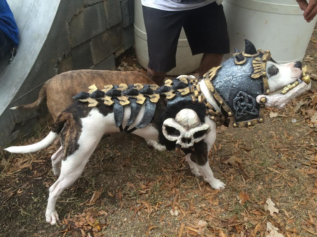 Viking GWAR Dog