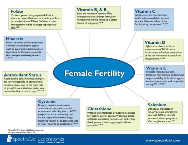 Functional Fertility - Part 2 — Stewarding Life Wellness