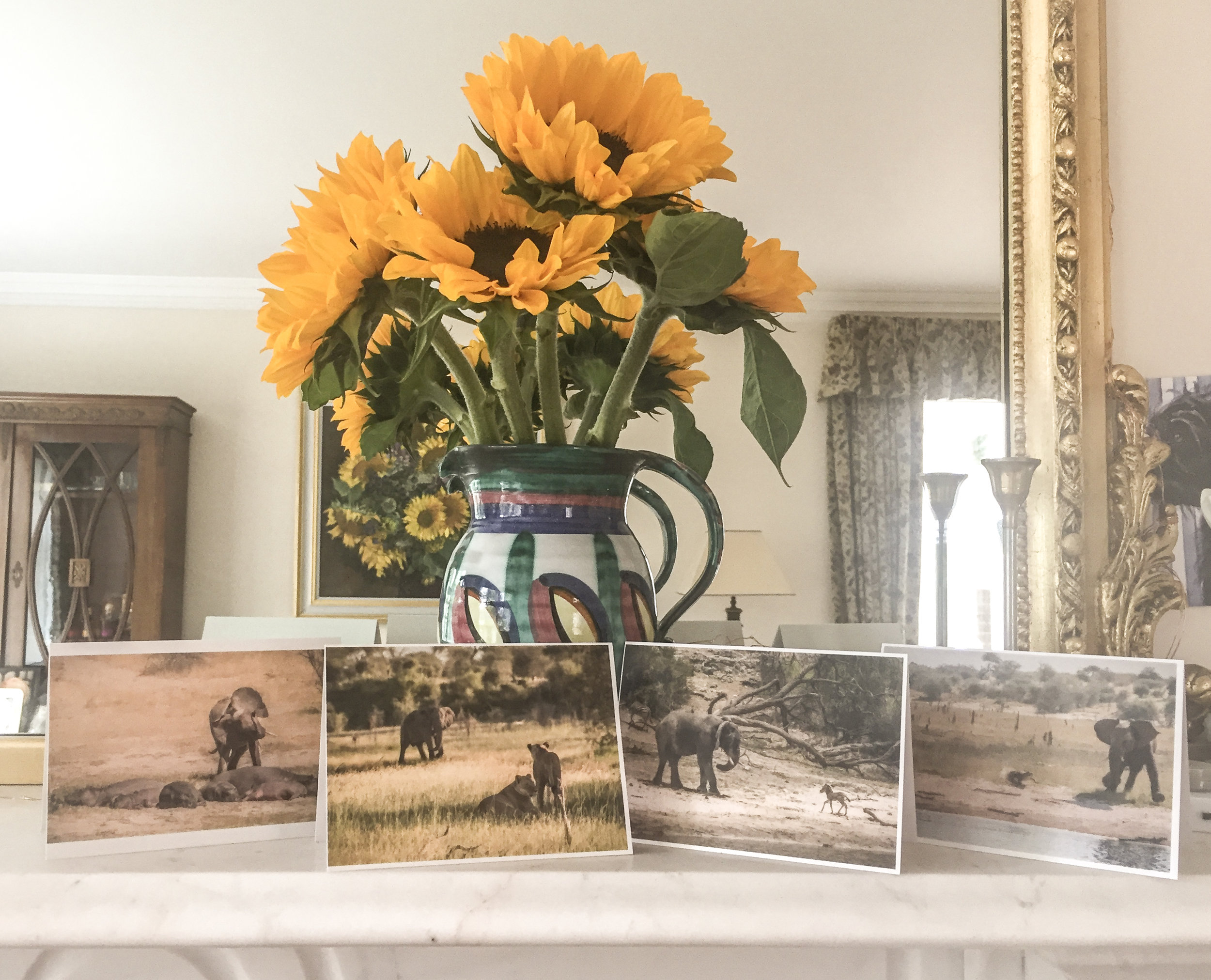 greetingscards2-2.jpg
