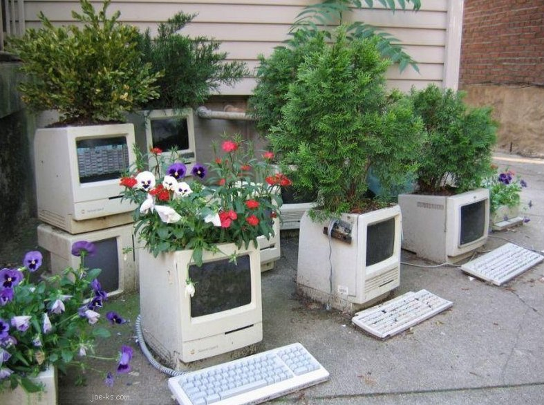 ComputerGarden.jpg