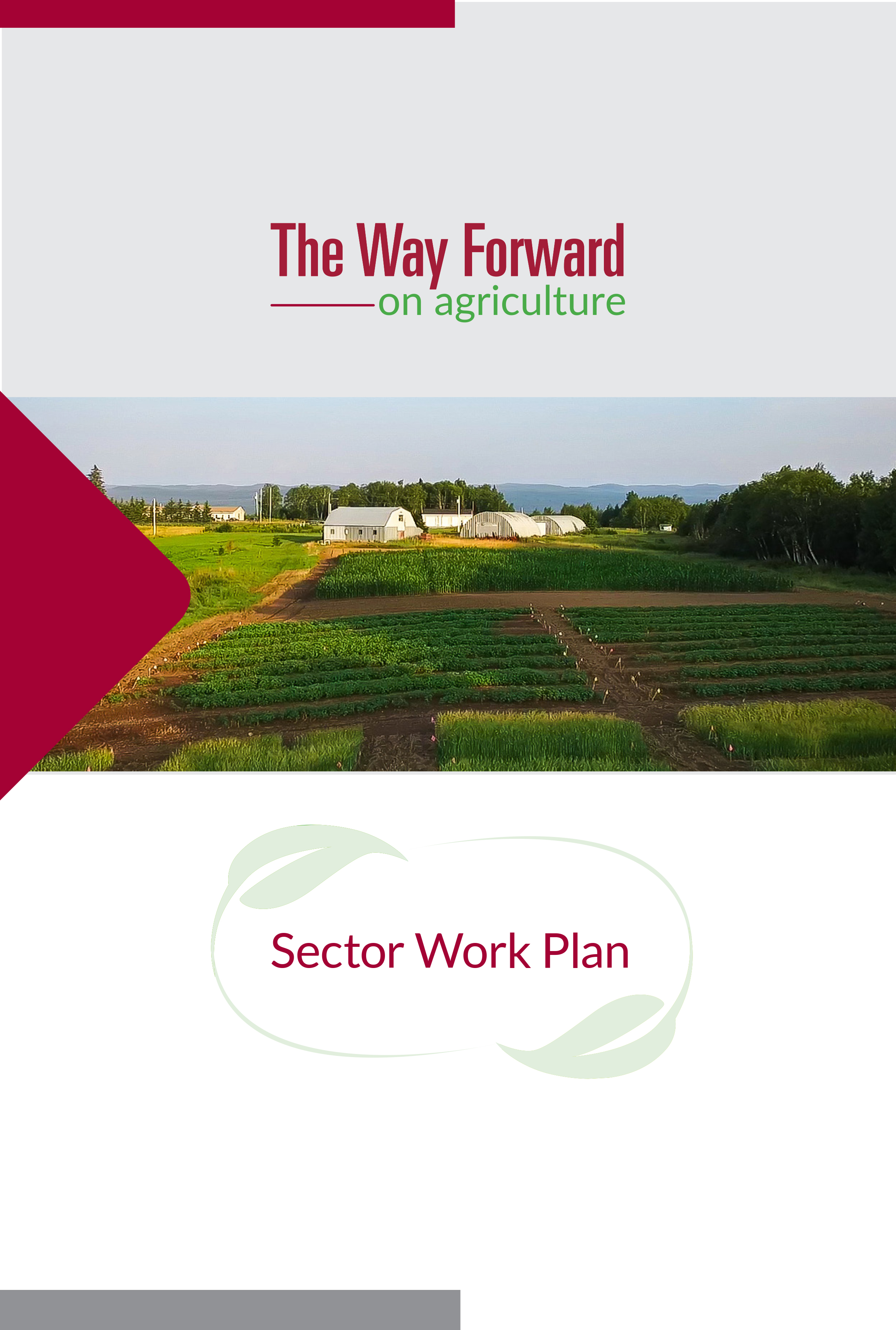 Click Cover Image to Read The Work Plan